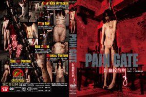[DDSC-025] PAIN GATE ~釘血絞首刑~ スパンキング・鞭打ち 拷問・ピアッシング SM Scrum  suffocation