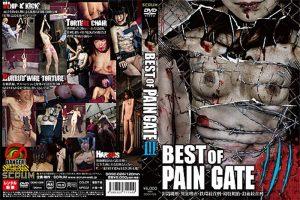 [DDSC-026] BEST OF PAIN GATE 3 スパンキング・鞭打ち  Choking  Omnibus スクラム Scrum