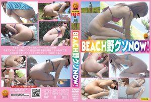 [E64-07] BEACH野グソNOW! スカトロ エボ・ビジュアル Evo Visual  defecation ジェイド