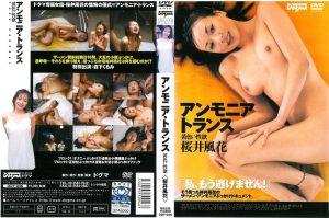[DDT-046] アンモニアトランス 桜井風花 フェラ・手コキ  Pissing   Drinking Urine  Handjob