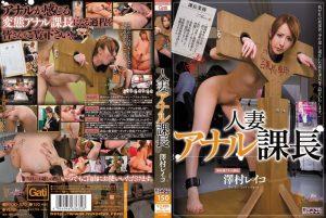 [MIGD-470] 人妻アナル課長 澤村レイコ  Anal  Orgy 2穴  Training  Aunt