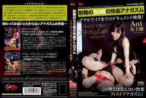 [QRDC-008] 射精の50倍の快楽アナガズム アナルでイクまでのドキュメント映像! Aoi女王様 SM  Queen  Fist 女王様・M男 Queen Aoi