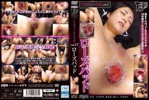 [DDT-523] TOHJIRO全集 Vol.17 ローズバッド  Rin Kibana 露出 樹花凜 dogma DDT