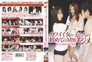 [NFDM-217] カワイイ女の子たちの初めてのM男イジメ 痴女 辱め  Ai Naoshima   Restraint