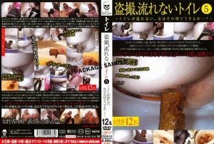 [DSDA-65] 盗撮、流れないトイレ 5 Future Future トイレ(盗撮) 未来フューチャー  dark side