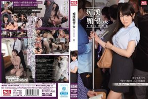 [SNIS-441] 痴漢願望の女 変態女教師編 葵 調教 Risky Mosaic S1 NO.1 STYLE Training Female Teacher
