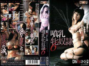 [CN-454] 噴乳牝奴隷6    【VHS】 おばさん  Other SM 中野D児 SM Nakano D child