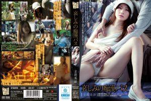 [ADN-072] 哀しみの痴漢バス 立花美涼 人妻 立花美涼 Hankyu Taro Solowork Drama