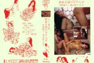 [M-151] 義姉の誘惑 キレイなお義姉さんとボクの、秘密の時間…    【VHS】 近親相姦 Next Toilet  fetish その他フェチ  sister-in-law