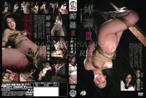 [ADV-R0642] Ono Maria Tied Drown III Art Video Training