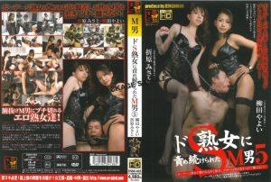 [DSMI-005] ドS熟女に責め続けられたM男 5 おばさん 柳田やよい 女王様・M男 BS